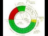 REGOLAZIONE NATURALE DELLA FERTILITA':    Metodo Billings